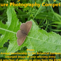 Nature Photography Competition