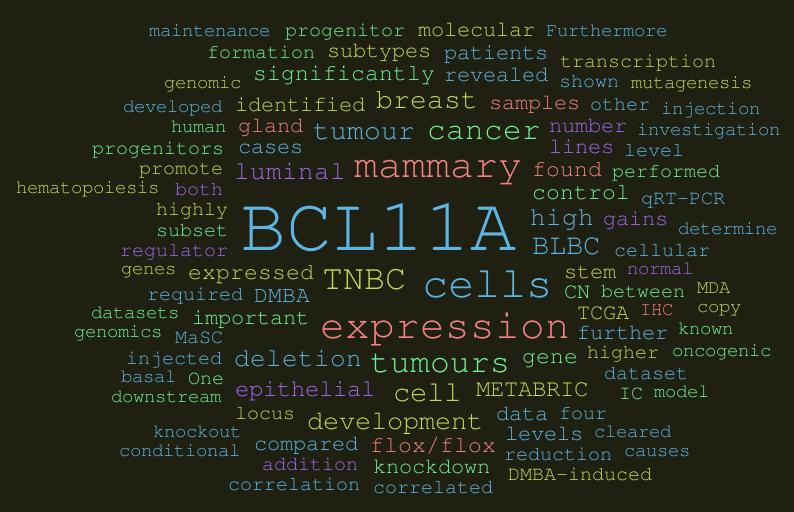 Novel breast cancer gene found